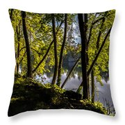 Waters Edge Throw Pillow by Bob Orsillo