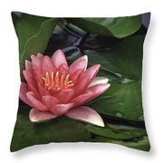 Water's Edge Throw Pillow by David and Carol Kelly