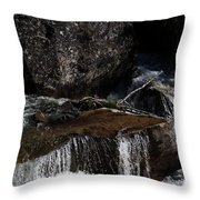 Water's Flow Throw Pillow