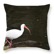 Water's Great Throw Pillow