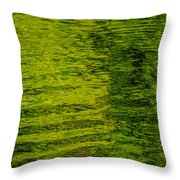 Water's Green Throw Pillow by Roxy Hurtubise