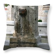 Waterspout Garden Chateau Chaumont Throw Pillow