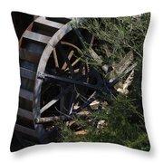 Waterwheel Throw Pillow