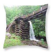 Waterwork Throw Pillow
