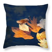 Watery Grave Throw Pillow