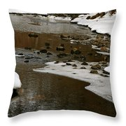 Watery Trail Throw Pillow