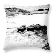 Wating For The Thaw Throw Pillow