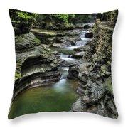 Watkins Glen Cascades Throw Pillow