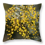Wattle Flowers Throw Pillow