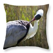 Wattled Crane Throw Pillow