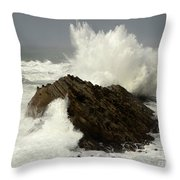 Wave At Shore Acres Throw Pillow