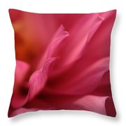 Wavelets Throw Pillow
