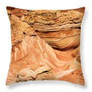 Waves And Twists Throw Pillow