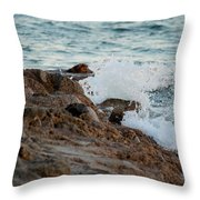 Waves Hitting The Rocks Throw Pillow