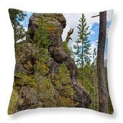 Waving Rock At Yellowstone Throw Pillow