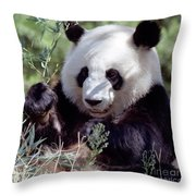Waving The Bamboo Flag Throw Pillow