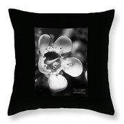 Wax Flower Throw Pillow
