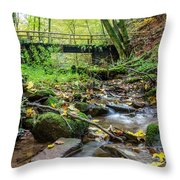 Way Of St. James Bridge Throw Pillow by Jeffrey Teeselink