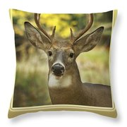 Way To Go Dad Congratulations On A Successful Deer Hunt Throw Pillow