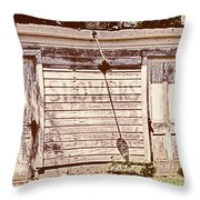Wayside Shower Throw Pillow