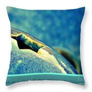 We All Speak The Master Language Of The Universe Throw Pillow