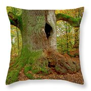 We Are Here Since 1000 Years 2 Throw Pillow