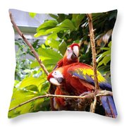 We Are Ready For Pictures Throw Pillow