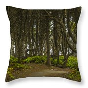 We Follow The Path II Throw Pillow by Jon Glaser