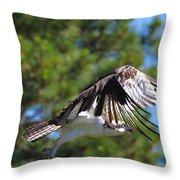 We Have Liftoff Throw Pillow