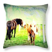 We Live Right Here Inside This Fence And Under This Big Mountain  Throw Pillow