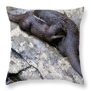 We Otter Snuggle Up Throw Pillow