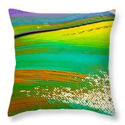We Paint 5 Throw Pillow