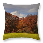 We Will Be Back Throw Pillow