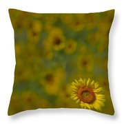 We Worship The Sun Throw Pillow