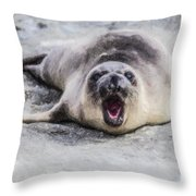Weaner Calling Throw Pillow