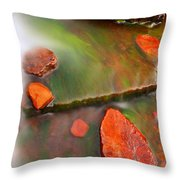 Weano Gorge - Karijini Np 2am-111702 Throw Pillow