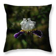 Wearing Purple Today Throw Pillow
