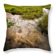 Weather Reflected Throw Pillow