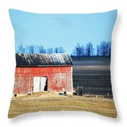 Weather Worn Throw Pillow
