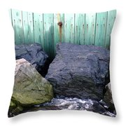 Weatherbeaten Throw Pillow