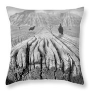 Weathered 3 Throw Pillow