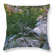Weathered Cedar Overlooking The Castor River Throw Pillow
