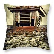 Weathered Cupola Throw Pillow