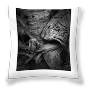 Weathered Poster Throw Pillow