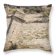 Weathered Remains Throw Pillow