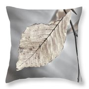 Weathered Remnant Of Summer Throw Pillow