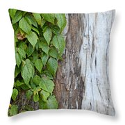 Weathered Tree Trunk With Vines Throw Pillow