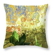 Weathered Wall 01 Throw Pillow