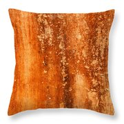 Weathered Wall 04 Throw Pillow