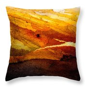 Weathered Wood Landscape Throw Pillow